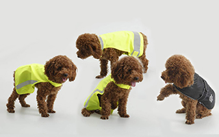 Pet safety vests