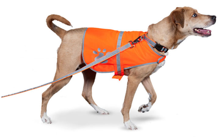 Reflective vests protect pets in hot places and bad weather