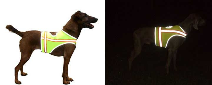 Reflective vest protect pet from danger