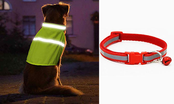 Protect your dog in the dark